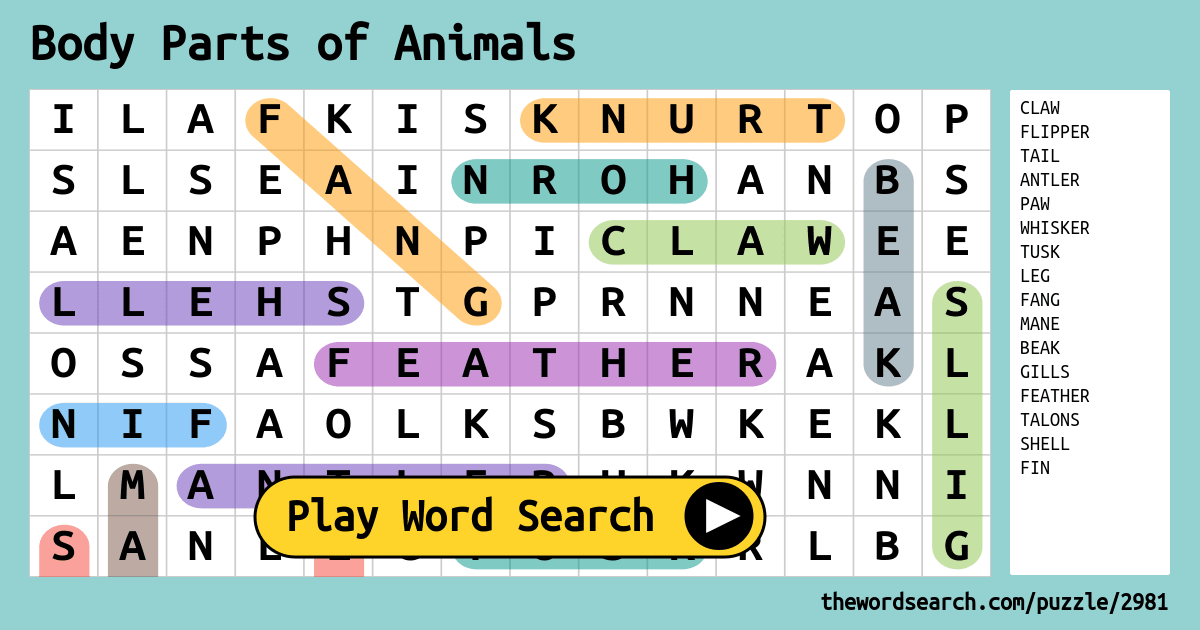 Body Parts Of Animals Word Search
