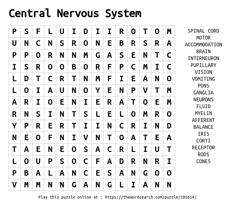 Word Search on Central Nervous System