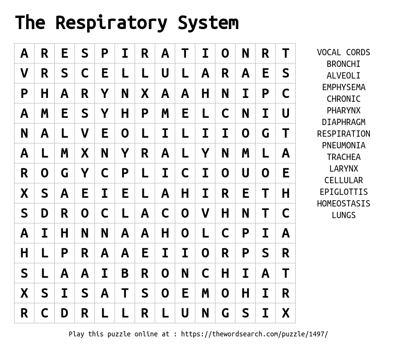 Word Search on The Respiratory System