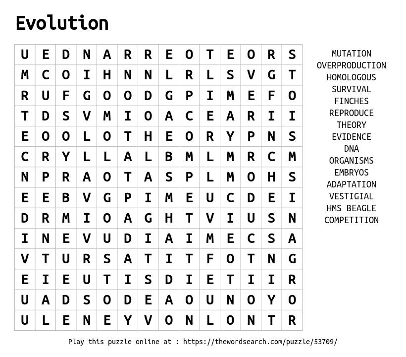 Word Search on Evolution