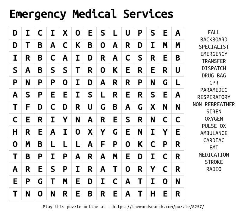 Word Search on Emergency Medical Services