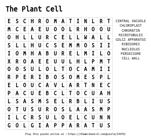 Word Search on The Plant Cell